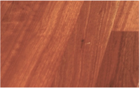 Picture: Sydney Blue Gum flooring - engineered. From Portland OR supplier